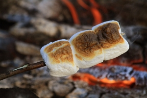 marshmallows roasting over open campfire